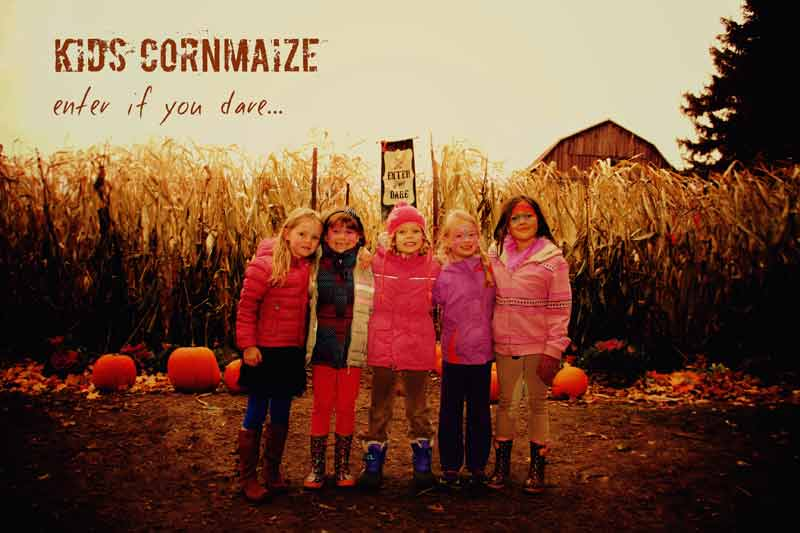 kids-cornmaze