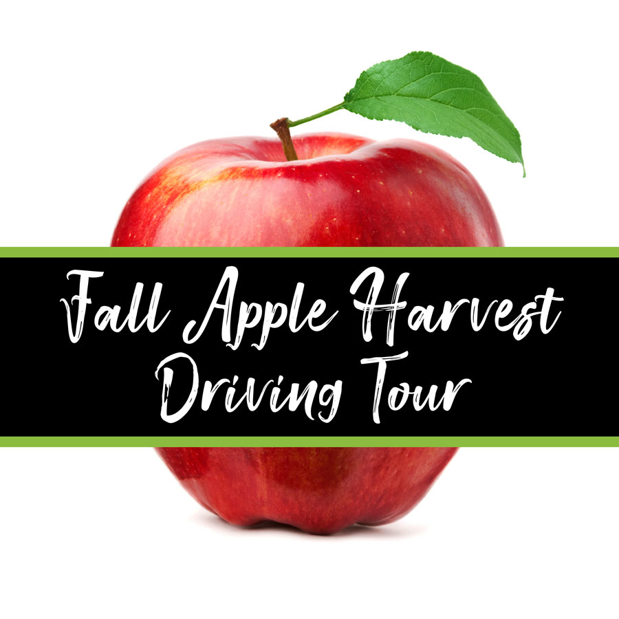 Fall Apple Harvest Driving Tour