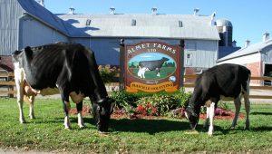 Almet Farms