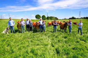Sargent Dairy Farm